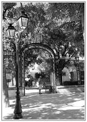 Devant le jardin (stephphoto8184) Tags: portail jardin nimes papy noir et blanc lampadaire arbre