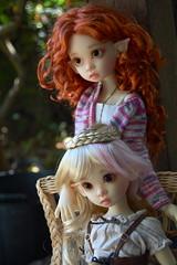 Sisters Forever (Emily1957) Tags: gracie tertia resin kayewiggs dolls doll bjd toys toy light naturallight nikond40 nikon kitlens plait braid