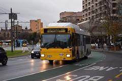 753-Adelaide-11_07_16 (Lt. Commander Data) Tags: compressednaturalgas cng 2016 winter july australia southaustralia northgate 206 cbd adelaide victoriasquare lightcitybuses bus adelaidemetro 160 ap australpacific nl202 man 753