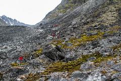 Climbing the moraine towards Gravnesbreen IMG_8583 (grebberg) Tags: magdalenefjorden spitsbergen svalbard july 2016 moraine gravnesbreen