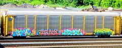 arek - krone - stoe - jakot '16 (timetomakethepasta) Tags: arek krone stoe stoer cdc ba nsf freight train graffiti art autorack bnsf selkirk new york upstate yard