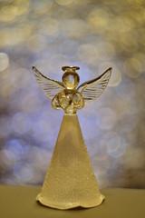 DSC_5155 (Milena Z) Tags:          442      angelo angel colore color luce giocodiluci ombra bokeh helios helios442 manuallens senzafiltri vladikavkaz