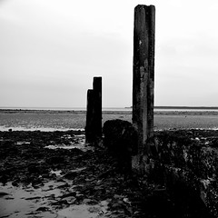 Tay groyne (red.richard) Tags: blackandwhite monochrome post landscape sea outdoor river tay groyne