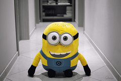 One in a Minion (Gikon) Tags: bw color 35mm nikon funny indoor simple selective minion deptoffield 35mmf18 gikon d3100