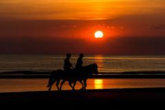 IMG_4749 (Leif Hinrichsen) Tags: sunset summer beach strand denmark island sonnenuntergang sommer insel northsea dänemark danmark nordsee abendhimmel sandstrand rømø röm nordseeinsel