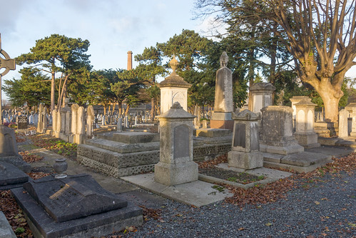 Mount Jerome Cemetery & Crematorium is situated in Harold's Cross Ref-100465