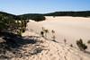 fraser island (AS500) Tags: white lake island bush sand dune australia blow queensland fraser bushwalk wabby