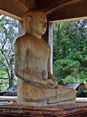 (Janesha B) Tags: rockcarving anuradapura srilankaculturaltriangle buddhastature samadibuddhastatue srilankaworldheritage
