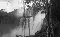 iguazu (sturm@nskie) Tags: brasil de cataratas iguazu