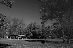 2014 Picnic Grove In Monochrome 2 (DrLensCap) Tags: county chicago fall robert monochrome forest illinois woods picnic grove district cook il preserve kramer preserves caldwell in