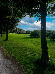 Noch 10 Minuten und dann zu Hause.../ 10 min to home (Katz-Ffm) Tags: cloud nature forrest frankfurt wiese wolken wald weg