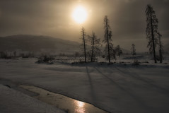 Breaking Through (dbushue) Tags: trees winter snow mountains nature sunshine river landscape nikon scenery shadows warmth valley yellowstonenationalpark wyoming chill ynp 2014 lamarvalley dailynaturetnc14 dailynaturetnc15