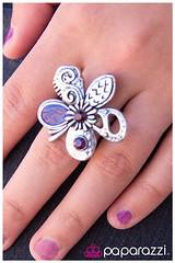 225_ring-purplekit1june-box002