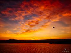 Early Bird (acahaya) Tags: bird sunrise glow kenya lakebaringo lakecloud