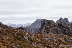 20150204-56-Peaks of the Western Arthurs (Roger T Wong) Tags: mountain trek outdoors nationalpark walk australia hike tasmania np bushwalk quartzite tramp wha southwestnationalpark westernarthurs canonef24105mmf4lisusm worldheritagearea canon24105 canoneos6d westernarthurrange