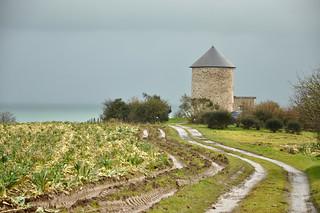 La Bretagne, Cancale, Vue sur Mer ou sur Champ de Choux...