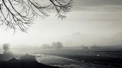 jutro 1 (skip.to...) Tags: city morning light shadow blackandwhite river blackwhite serbia srbija reka valjevo kolubara kolubarskikej