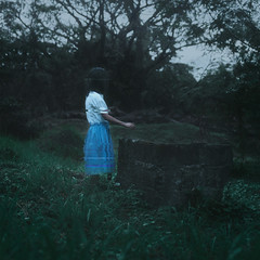 Memory fragments (Mike Alegado) Tags: old mike girl digital forest surreal memory future glitch fragment remnant alegado