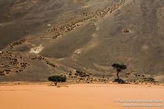 Sossousvlei, Namibia