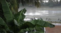 Siem Reap-Heavy Rain