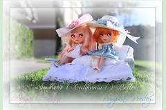 SOUTHERN  ( California ! )  BELLES ...