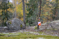 An orienteering control on a rocky forest slope (Solvalla, Espoo, 20111015) (RainoL) Tags: autumn sport stone forest espoo finland geotagged october u orienteering fin nuuksio suunnistus uusimaa orientering nyland 2011 esbo solvalla 201110 20111015 sg2012 geo:lat=6029077000 geo:lon=2456475000