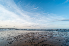 M1140383.jpg (meerecinaus) Tags: longreef beach collaroy newsouthwales australia au