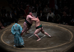 Two sumo wrestlers fighting at the ryogoku kokugikan arena, Kanto region, Tokyo, Japan (Eric Lafforgue) Tags: people male men sport japan horizontal asian japanese tokyo big fight referee asia fighter power martial wrestling fat traditional champion culture traditions lifestyle competition clash ring east indoors tournament ritual leisure sumo inside strength fullframe athlete adults wrestlers adultsonly cultural obese overweight ryogoku 3people competitors kantoregion threepeople colourpicture 2029years japan161060