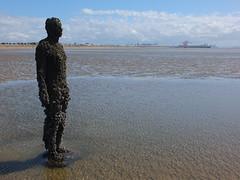 DSCF0721 (SierPinskiA) Tags: sea shells beach liverpool sand ironman pools barnacles ironwork mayday seashore merseyside anthonygormley irishsea 2016 anotherplace crosbybeach blundellsands fujixs1