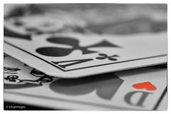 The heart . (sdupimages) Tags: white black macro cards bokeh coeur dame mondays partial valet cartes partiel