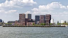 Mllerhoofd in Rotterdam (R. Engelsman) Tags: architecture building buildingcomplex skyline bricks mllerpier mllerhoofd mullerhoofd rotterdam rotjeknor 010 netherlands nederland holland waterfront water outdoor