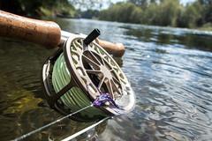 CowlitzRiverSteelheading073116_32.jpg (alejandromendoza972) Tags: cowlitzriver flyfishing spey speyrod steelhead steelheading washington