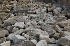 Tresco, Isles of Scilly (x70tjw) Tags: tresco islesofscilly