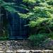 Tokugawaen 徳川園