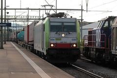 BLS Cargo Ltschbergbahn Lokomotive Baureihe Re 486 506 - 9 mit Werbung BLS Cargo - Die Alpinisten ( Hersteller Bombarider Traxx F140 MS ) am Bahnhof Rheinfelden im Kanton Aargau der Schweiz (chrchr_75) Tags: christoph hurni chriguhurni chriguhurnibluemailch chrchr chrchr75 august 2016 august2016 bahn eisenbahn schweizer bahnen zug train treno albumbahnenderschweiz2016712 albumbahnenderschweiz schweiz suisse switzerland svizzera suissa swiss albumblsltschbergbahn bls ltschbergbahn chrigu juna zoug trainen tog tren  lokomotive  locomotora lok lokomotiv locomotief locomotiva locomotive railway rautatie chemin de fer ferrovia  spoorweg  centralstation ferroviaria albumblscargolokomotivere485re486 cargo blscargo