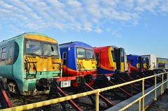 Lined up at Wimbledon.... (stavioni) Tags: west electric train south rail railway trains depot multiple emu wimbledon unit swt class458 class455 class456 456016 458009 456006 458504