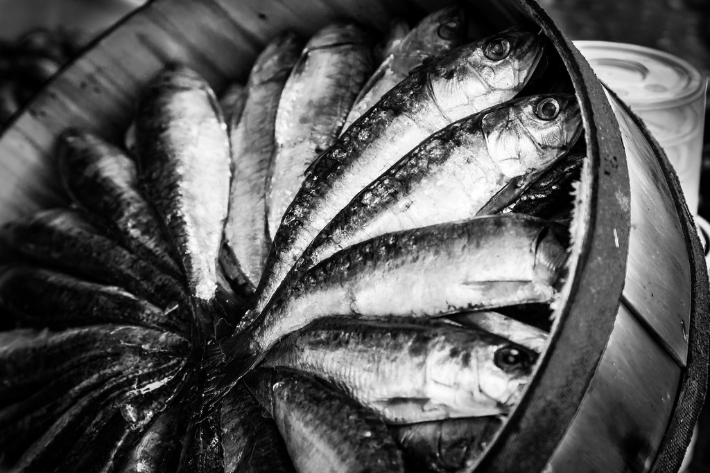 The world 39 s best photos of blackandwhite and oliveoil for Best white fish to eat