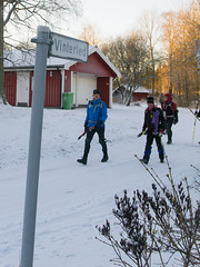 Vinterled (David Thyberg) Tags: winter