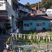 渡鹿野島 画像14