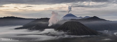 Sleepy Giants (t3cnica) Tags: travel panorama mountain fog clouds sunrise indonesia landscapes intense bromo mountbromo travelphotography mountsemeru bromotenggersemerunationalpark tenggercaldera mountbatok