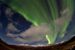 Northern Lights (Squirrel Girl cbk) Tags: iceland december fisheye tokina northernlights auroraborealis 2014 1017mm