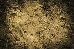 Dry Land (Moretti Matteo) Tags: road sea summer italy sun fall texture mystery strada italia mare august unknown sole terra puglia gemelle orso stradina 2014 battuta sorelle