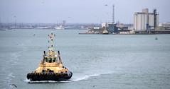 Svitzer Bargate (R~P~M) Tags: uk greatbritain england boat ship unitedkingdom vessel hampshire solent tug southampton hants