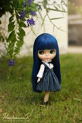 Little Girl Neo Blythe : Cancan Cat