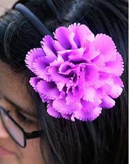 Glimpse of Malibu Purple Headband K2 P6520-4
