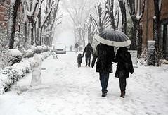 Bonhomme de neige, Toulouse, Haute-Garonne, Midi-Pyrénées (lyli12) Tags: france landscape nikon hiver neige toulouse paysage ville urbain bonhommedeneige flocon hautegaronne d7000