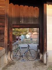 Surly CC Nara. Japan. (kinkicycle.com) Tags: bicycle japan japanese cycling bikes bicycles nara surly todaiji xtr raceface brucegordon shimano crosscheck rocknroad narrowwide
