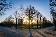 Augarten - Vienna (_gate_) Tags: world vienna wien park sunset 2 sun tower public colors beautiful clouds garden star austria march österreich war shadows no ww february sonne märz flak februar flakturm augarten