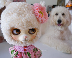 Weeeeeellllll!!!!!! Technically speaking, you are NOT a lamb........