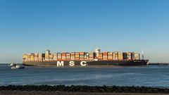 Containerschip MSC Oscar - Maasmond - Port of Rotterdam (Frans Berkelaar) Tags: mscoscar containership portofrotterdam zuidholland nederland nl ships vessels schepen schiffe navires schip vaartuig mediterraneanshippingcompany twop maasmond